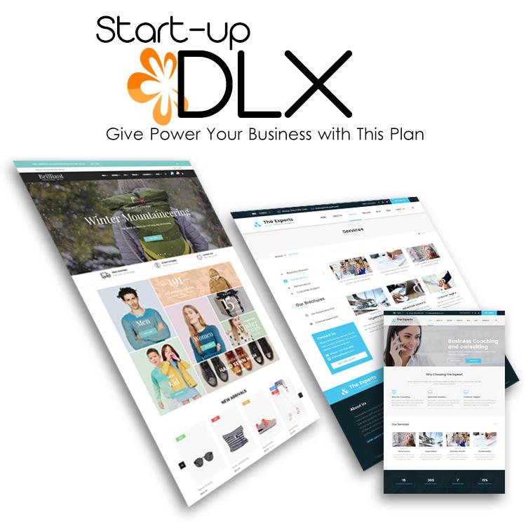 start-up-deluxe-website-designing-plan-by-webtue-mukunda-software-inc